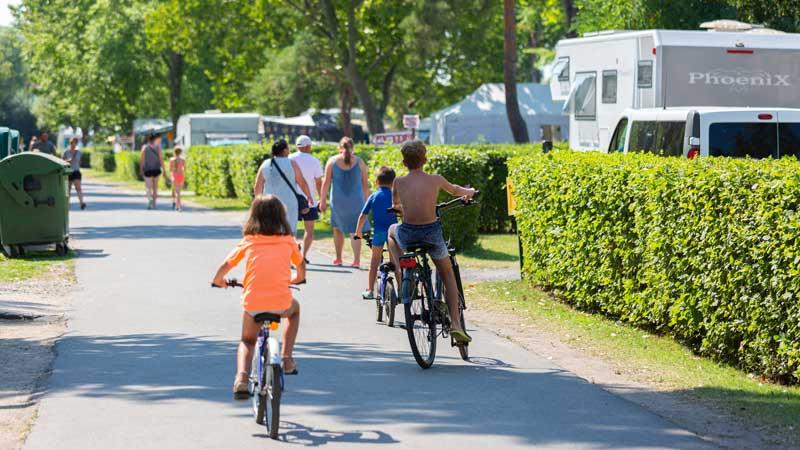 Kerékpárbérlés